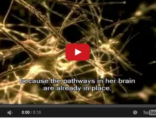 Watch the Amazing Power of the Human Mind!!